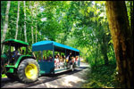 All aboard on this all time favorite trailer ride for an enjoyable discovery tour around the Resort.