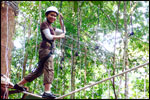 High Ropes Course - Multi-Vine Traverse