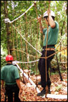 Low Ropes Course - Net Walk