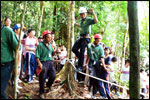 Low Ropes Course - Postman Walk