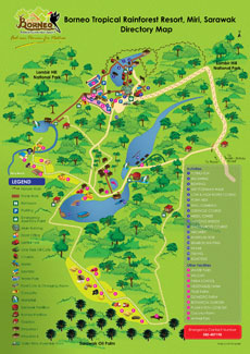Actitivies Map Directory Map